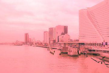 Rotterdam - Erasmusbrug en omgeving - in zalm tinten van Ineke Duijzer
