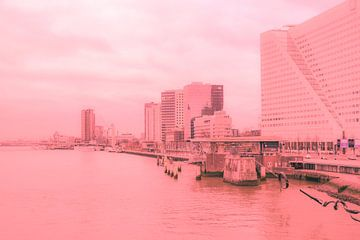 Rotterdam - Erasmusbrug en omgeving - in zalm tinten von Ineke Duijzer