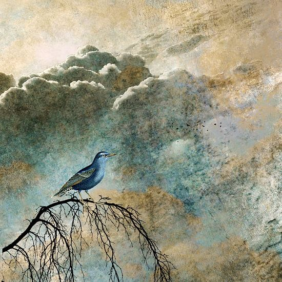 HEAVENLY BIRD IIa