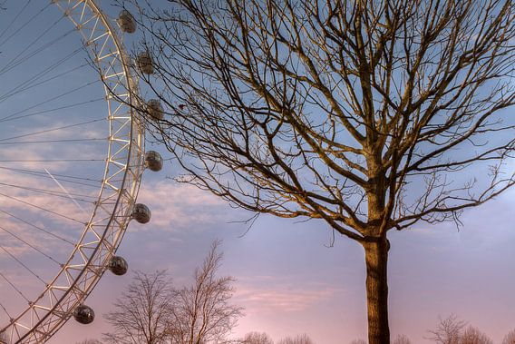 London Eye van Carina Buchspies