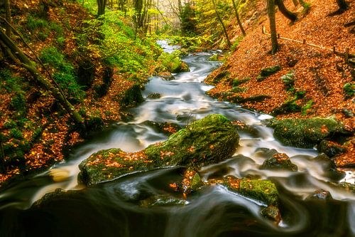 Sfeervolle rivier met rotsblokken van