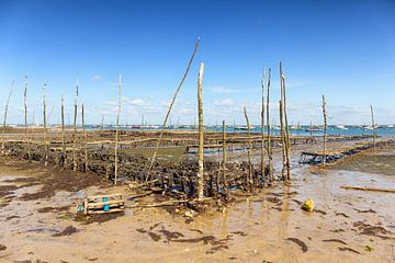 Mosselbanken bij laag water in de baai van Arcachon in Frankrijk van