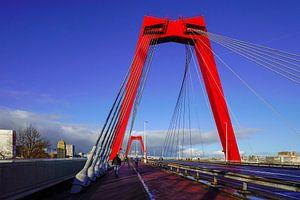 Willemsbrug in Rotterdam