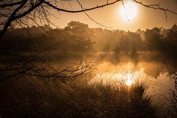 Golden sunrise von Jeroen Maas