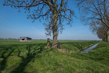 Schuur in weiland 05 van Moetwil en van Dijk - Fotografie