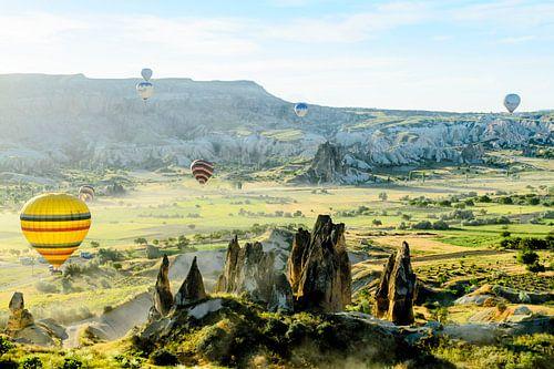 Luchtballonnen en zonovergoten landschap van