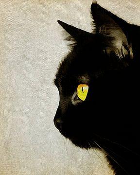 Porträt einer Katze von Jan Keteleer