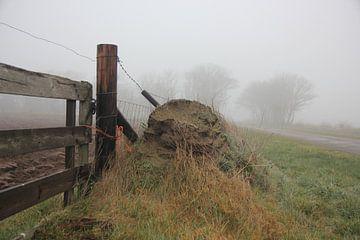 Texel Landschap 046 von Starworks Lien van der Star