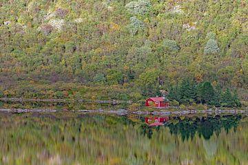 Die Hütte am See von Reinhard  Pantke