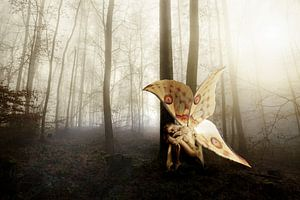 Schmetterlingsfrau von Ramon Enzo Wink