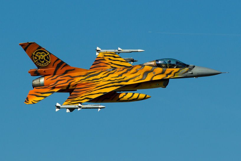 Belgian Air Force F-16AM Fighting Falcon von Dirk Jan de Ridder