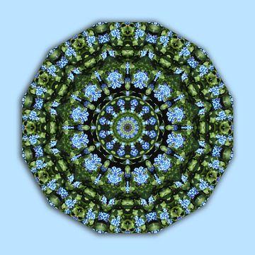 Flower Mandala, Flower Mandala, Forget me nots, Forget-me-nots van Barbara Hilmer-Schroeer