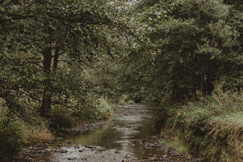 Fluss von Paulien van der Werf