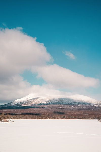 Besneeuwde bergtop in Japan van Mickéle Godderis