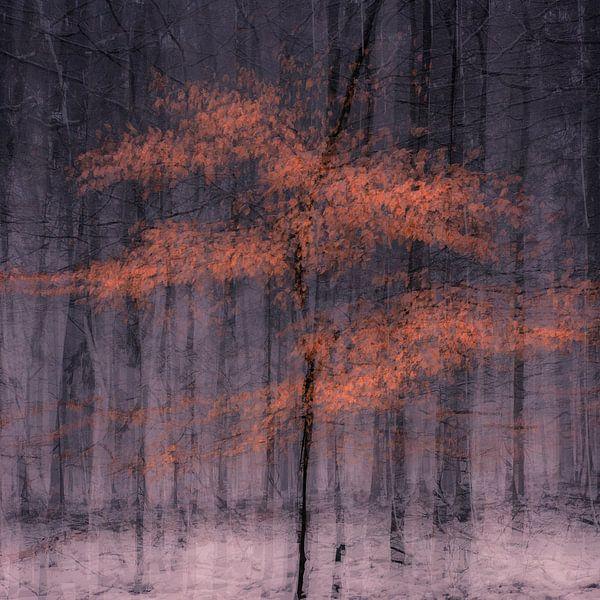 Deep autumn van jowan iven