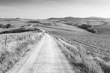 Toscaanse heuvels in zwart-wit sur Damien Franscoise