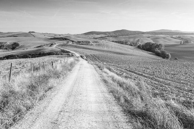 Toscaanse heuvels in zwart-wit van Damien Franscoise