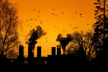 Rokende schoorstenen van een fabriek in de ondergaande zon van ManfredFotos