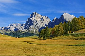 Herrlicher Herbsttag auf der Seiser Alm (Alpe de Siusi) von Gisela Scheffbuch