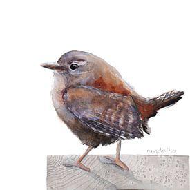 Winterkoninkje vogel van Angela Peters
