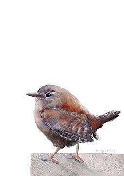 Zaunkönigsvogel von Angela Peters