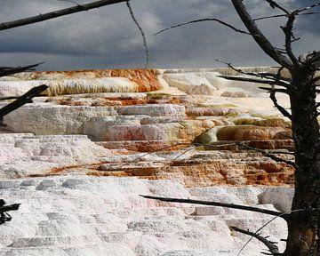 Sinterterrassen bei Mammoth Hot Springs van Christiane Schulze