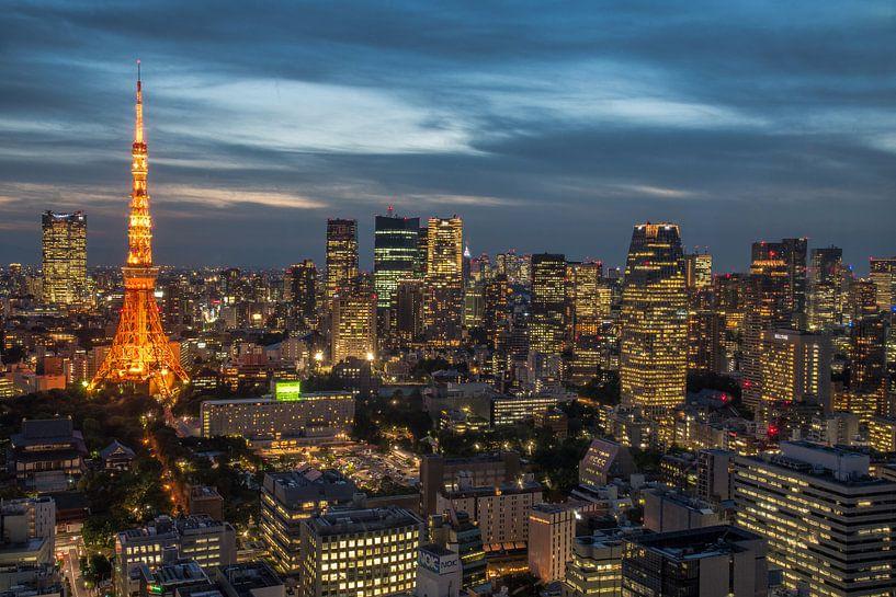 Tokyo tijdens blue hour van Mike Peek