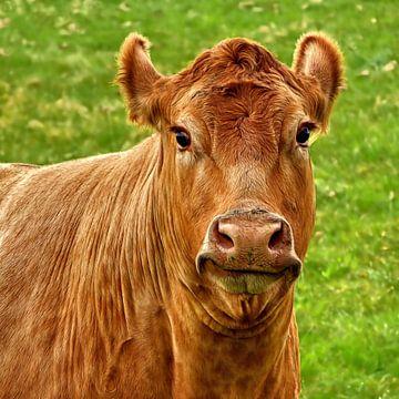La Vache qui rit... (De lachende koe...) van Caroline Lichthart