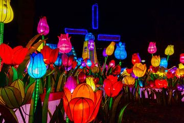 Hollandse Tulpen op het  China light festival van Hans Brinkel
