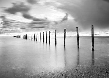 Strand Nordseepfähle im Wasser in Schwarz-Weiß von Marjolein van Middelkoop