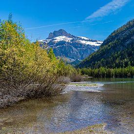 Lac de Derborence (3) van Ingrid Aanen
