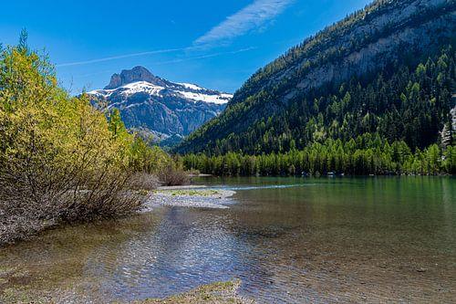 Lac de Derborence (3) van