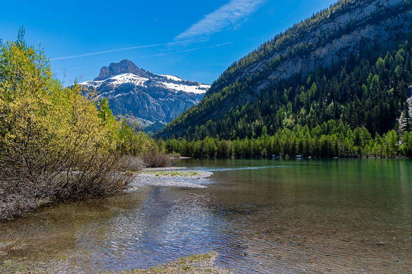 Lac de Derborence (3), Zwitserland van Ingrid Aanen