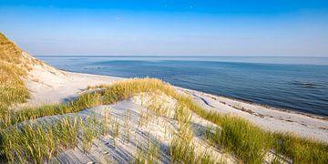 Oostzee Duinen Panorama van Sascha Kilmer