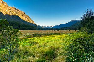 Eglinton Valley, op weg naar Milford Sound, Nieuw Zeeland