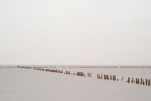 Silence III van Aline van Weert