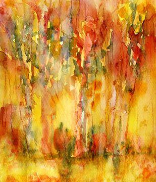 Schatten spenden im Wald von Claudia Gründler