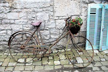 Belgische fiets met luiken van Willem Visser