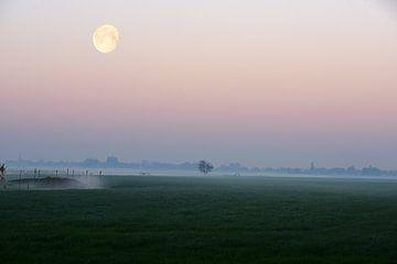 Nebliger Sonnenaufgang in der niederländischen Landschaft mit Kanal in den Feldern und dem Mond von Nfocus Holland