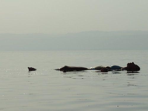 Zen in de Dode Zee, Jordanië van Nadine Geerinck