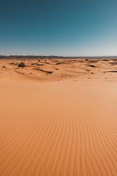 Marokko woestijn 2