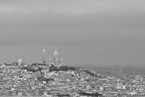 Eiffeltoren uitzicht van