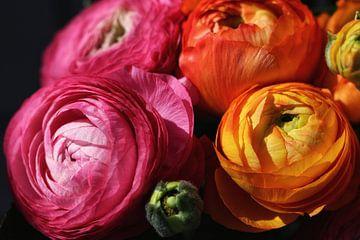 Blumen von nataschja van der Woude-de Jong