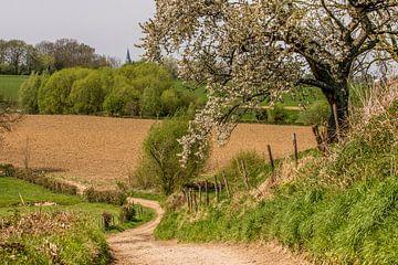 Holle weg bij dorpje Holset  van John Kreukniet