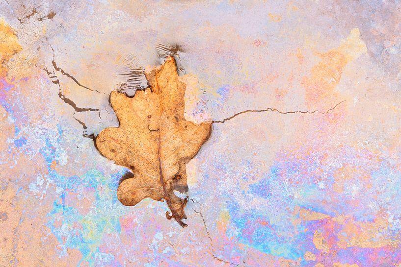 Eikenblad op kleurig kwel van Karla Leeftink