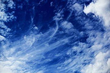 Sky van Vitaliy Zalishchyker
