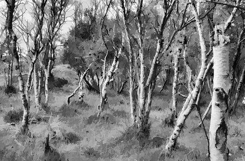 Berkenbos in zwartwit, Digitale kunst