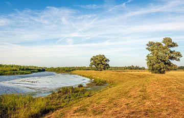 Kleurrijk Biesbosch landschap van Ruud Morijn