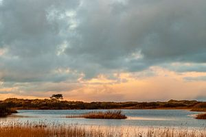 Het laatste beetje zonlicht valt over de duinen bij het Griltjeplak op Terschelling van Alex Hamstra