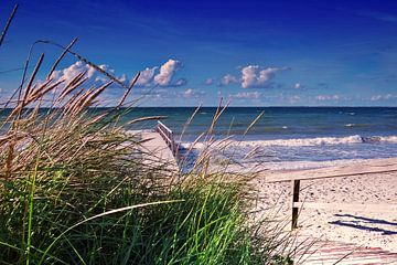 Ostsee Strand  von Julia Delgado